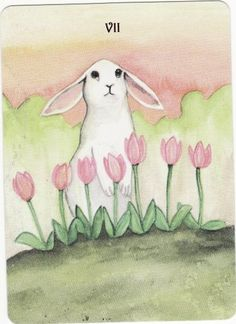 The Rabbit Tarot