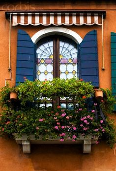 Love all the beautiful flower in Italy