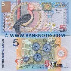 Suriname 5 Gulden 2000  Obverse: Fauna, flora and map of Suriname. Featured bird: Red-necked Woodpecker (Campephilus rubricollis); Butterflies and a vampire bat; Coat of Arms. Reverse: Featured flower: Giant Granadilla (Passiflora quadrangularis); Building of the Central Bank of Suriname. Watermark: Building of the Central Bank (CBVS).
