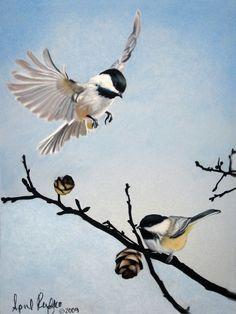 Pastel Drawing Chickadees Bird Fine Art ACEO Print. $5.00, via Etsy.