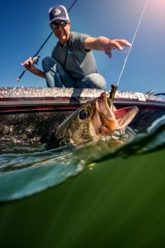 Reach for your dreams. Bass Fishing, Dreaming Of You, Costa, Dreams, Life, Sunglasses, Photography, Fashion, Moda