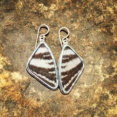 Zebra Swallowtail Earrings Wings, Butterfly, Personalized Items, Earrings, Jewelry, Ear Rings, Jewlery, Jewels, Jewerly