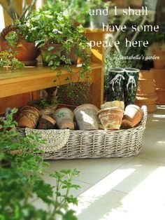 테라코타팟(토분) 구입처입니다.^^ : 네이버 블로그 Wicker Baskets, Picnic, Garden, Outdoor, Home Decor, Outdoors, Garten, Decoration Home, Room Decor