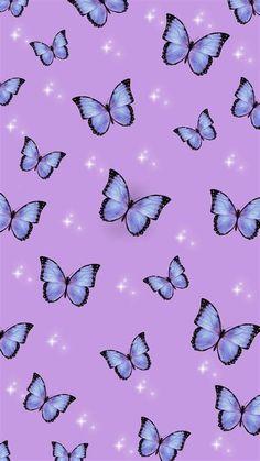Butterfly Wallpaper   Butterfly Wallpaper, Purple
