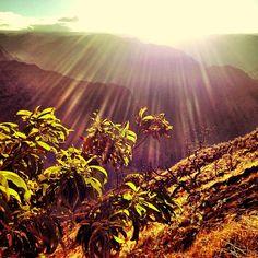 Trailblazing. #Kauai, #Hawaii, #Flowkane, #Travel