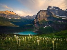 Bear Grass Heaven ~ Looking down on Grinnell Lake from Grinnell Glacier Trail, Glacier National Park.