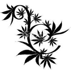 Vector cannabis leaf silhouette on white background. Marijuana ...