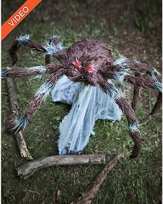 23 Inch Brown Jumping Spider Animatronics - Decorations - Spirithalloween.com