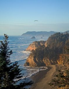 Oregon Coast. I want to be there right now.