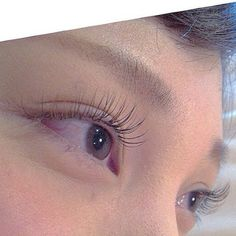 #eye#eyelash#color#gradation#color#lash#BROWN#CHERRY#KHAKI#BLACK#makeup#cute#sweet#eye#movie#eyelash#red#sexy#lovely#green#dolly#cute#brown#red#marsala#purple#make#茶色#ブラウンエクステ#ブラウン#タレ目#まつえく#まつげえくすて#まつげ #まつげえくすて #まつげエクステ