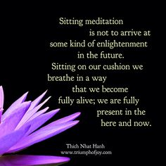 Sitting meditation is not to arrive at some kind of enlightenment in the future. Sitting on our cushion we breathe in a way that we become fully alive; we are fully present in the here and now.