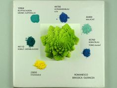 Neatest site- All pigments found in nature