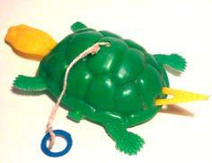 Tortuguita que nadaba en un barreño