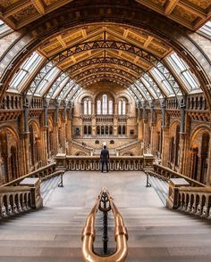 Natural History Museum London. Stunning photo by (@onthere) check out his gallery for more amazing photos (@onthere) by warrenjc