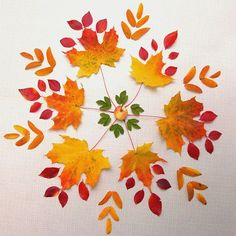 Leaves and then bear paw print for outer leaves. T & P mandala Autumn Crafts, Autumn Art, Nature Crafts, Autumn Leaves, Art Floral, Art For Kids, Crafts For Kids, Autumn Activities For Kids, Leaf Crafts