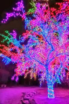 Spectacular lights