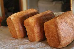 Mama's 100% Whole Wheat Bread