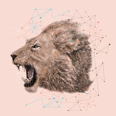 geometric, lion, head, vector