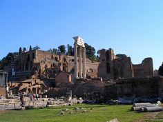 Forum Romanum in Rome, Italy  Where history is alive...