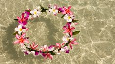 The lei is as iconic to Hawaiʻi as the hula, surfing and spirit of aloha. The fragrant, flower garland has long been a symbol of affection and appreciation that is given to loved ones.