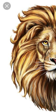 Print face and have fur/fringe coming from the head. Pencil Art Drawings, Animal Drawings, Cute Drawings, Lion Images, Lion Pictures, Drawing Cartoon Characters, Cartoon Drawings, The Lion Sleeps Tonight, Lion Drawing