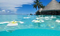 Cancun, bembeyaz kum, yemyeşil berrak bir deniz, palmiyeler, Hindistan cevizi, mercan kayalıkları, kısaca dünya üzerinde bir cennet. #Maximiles