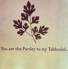 You are the Parsley to my Tabbouleh // Arab memes