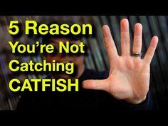 Homemade Catfish Bait, Best Catfish Bait, Gone Fishing, Fishing Tips, Catching Catfish, How To Catch Catfish, Catfish Fishing, Ups And Downs, Outdoors