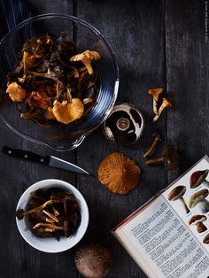 Rensa kantarellerna noga, borsta dem och skär de större svamparna i mindre bitar.Lägg den kalla svampen i en gjutjärnspanna, hetta upp och låt vätskan som bildas ånga bort. Lägg sen i smöret och stek svampen under fem minuter. Krydda med salt och peppar och servera direkt.