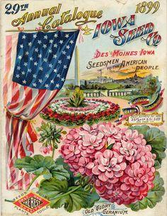 Vintage Garden Seed Catalogues Evans Gregory Iowa Seed Set of 5 Color Prints Vintage Labels, Vintage Postcards, Vintage Images, Vintage Cards, Vintage Ephemera, Vintage Signs, Garden Catalogs, Seed Catalogs, Plant Catalogs