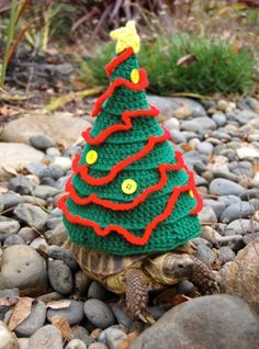 Here is the tortoise looking festive in his Christmas tree suit. #knitting