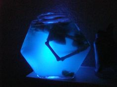 How to Make Drinks that Glow in the Dark  Scorpion Food and Recipes
