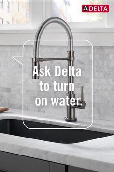 12 voiceiq technology ideas delta