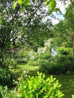 Les éléments indispensables d\'un jardin anglais   Gardens, Garden ...