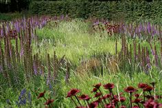 Lovely planting combination | Piet Oudolf