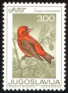 Red Crossbill stamps - mainly images - gallery format