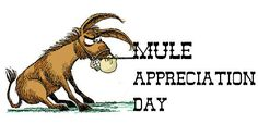 Days And Months, National Holidays, Appreciation, October, Celebrities, Movie Posters, Animals, Celebs, Animales