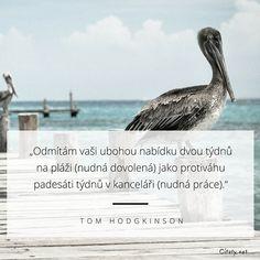 Odmítám vaši ubohou nabídku dvou týdnu na pláži (nudná dovolená) jako protiváhu padesáti týdnů v kanceláři (nudná práce). - Tom Hodgkinson #dovolená Motivation, Quotes, Beautiful, Quotations, Quote, Shut Up Quotes, Inspiration