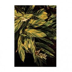 Tropicana 5 Teppich Schönstaub Nadja, Painting, Art, Nice Asses, Art Background, Painting Art, Kunst, Paintings, Performing Arts