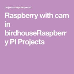 Raspberry with cam in birdhouseRaspberry PI Projects