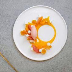 "6,013 Likes, 30 Comments - The Art of Plating (@theartofplating) on Instagram: ""Sorbet w/ orange, strawberry, chocolate, honey-lemon, grapefruit, pear, vanilla, coconut,…"""