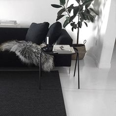 Loving this shot by @kenziepoo - perfect sofa and rug! Love! #charcoal #livingspace #greenery
