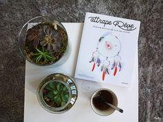 les 25 meilleures id es de la cat gorie terrarium pas cher sur pinterest cloche g teau au. Black Bedroom Furniture Sets. Home Design Ideas