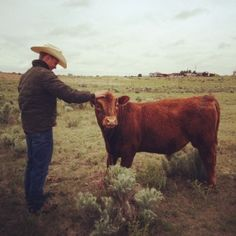 What cattle mean to ranchers! Love that my cousin wrote this and my other cousin is pictured!