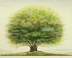 iamjapanese:  INAGAKI Akemi(稲垣朱実 Japanese, b.1933) Tree A Woodblock Print  via