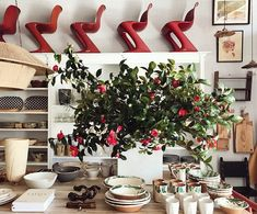 Camellia branches at the shop by @cjisrad. #nickeykehoe #camellia #❤️ #💚