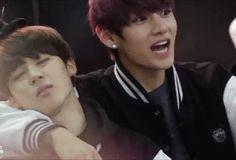 BTS Maknae Line (Semi-Hiatus) — tinyheart4kpop: Because VMIN hands are important