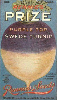 vintage seed packet images | Seed Packet, Prize Purple Top Swede Turnip, 1920