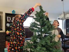 Festive Canadian Christmas, Christmas Wreaths, Christmas Tree, Festive, Holiday Decor, Home Decor, Teal Christmas Tree, Decoration Home, Room Decor