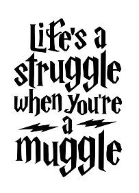 Harry Potter Muggle